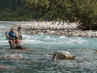 Fly fishing for bull trout in BC