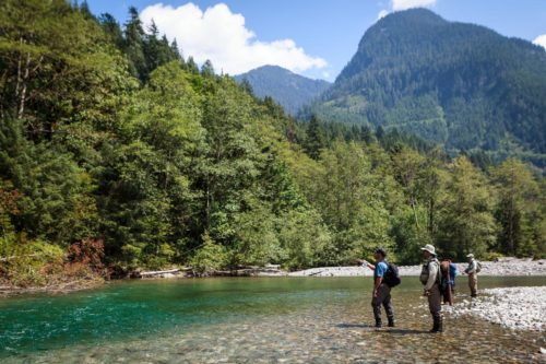 Guided fly fishing trips in Whistler, B.C.