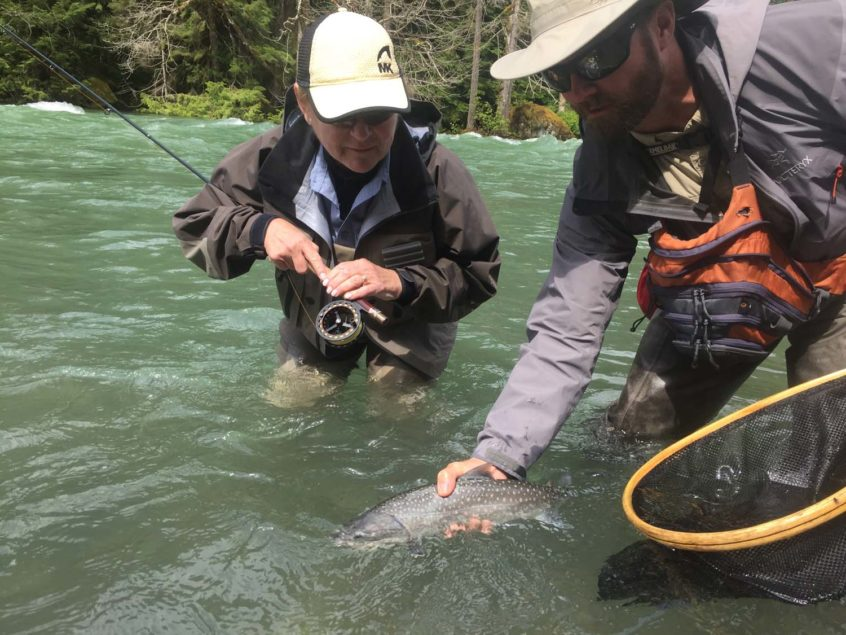 Bull Trout from the Cheakamus River in Squamish BC