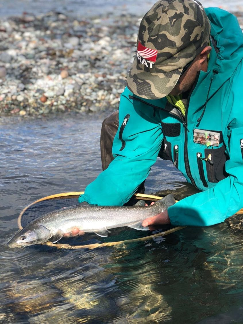 Clear river conditions for this bull trout in Squamish