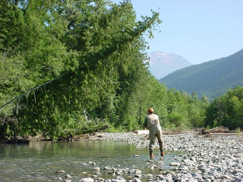 Casting for trout