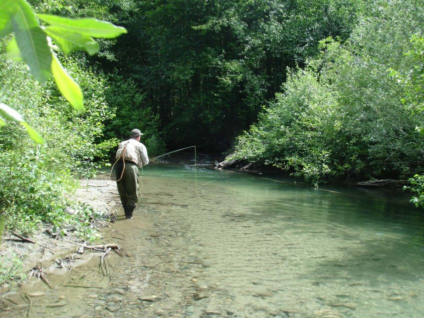 Upstream Nymphing for Trout near Whistler
