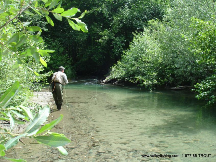 Fly fishing in clear water near Whistler