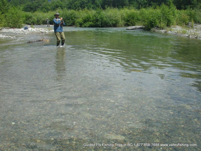 catching a trout in a river