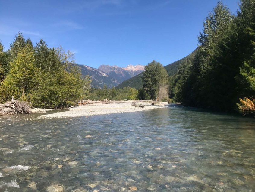 Birkenhead River Fly Fishing near Whistler