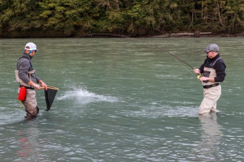 Pink, Chum, and Coho Salmon fishing in British Columbia, Canada