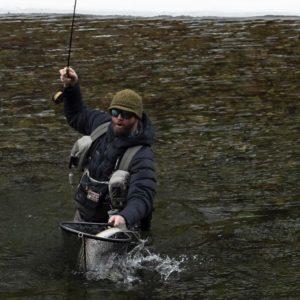 Netting a Steelhead caught Czech Nymphing